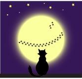 Gato y luna Imagen de archivo