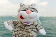 Gato y mar Fotografía de archivo libre de regalías