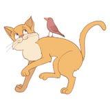 Gato y pájaro Fotografía de archivo libre de regalías