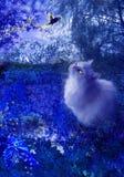 Gato y pájaro de la hada en la noche Foto de archivo