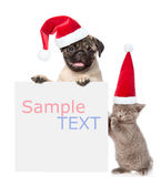 Gato y perro con los sombreros rojos de la Navidad que miran a escondidas de detrás tablero vacío y que miran la cámara Aislado e Fotos de archivo libres de regalías