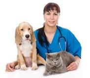 Gato y perro de abrazo veterinarios Aislado en el fondo blanco Fotografía de archivo libre de regalías