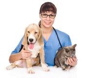 Gato y perro de abrazo veterinarios En el fondo blanco Fotos de archivo libres de regalías