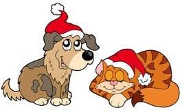 Gato y perro de la Navidad Fotografía de archivo libre de regalías