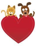 Gato y perro de la tarjeta del día de San Valentín Imagen de archivo