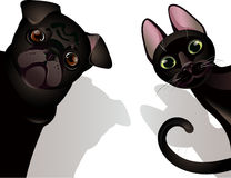 Gato y perro divertidos stock de ilustración