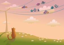 Gato y pájaros Fotos de archivo