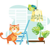 Gato y un loro Imagenes de archivo
