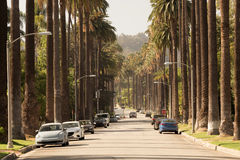Gator av Beverly Hills i Kalifornien fotografering för bildbyråer