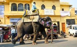 Gator av Jaipur, Rajasthan, Indien Arkivfoton