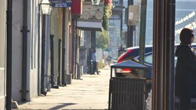 Gator av New Orleans 4k lager videofilmer