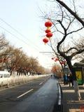 Gator i Kina royaltyfri fotografi