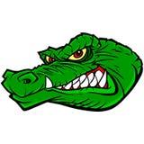 Gator Mascot Stock Images