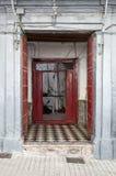 Gator tränga någon och detaljer av marbella spain royaltyfri foto