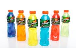 Gatorade - l'energia mette in mostra le bevande Immagini Stock Libere da Diritti