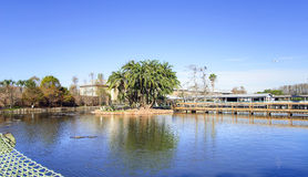 Gatorland, general view, Florida USA Royalty Free Stock Photography