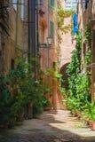 Gatorna av den gamla italienska staden av Siena Arkivfoton