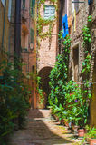 Gatorna av den gamla italienska staden av Siena i Tuscany Arkivbild