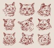 Gatos ajustados tirados mão do esboço Ilustração do vetor Imagens de Stock Royalty Free