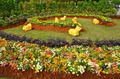 Gatos amarillos en jardín de flores hermoso Fotografía de archivo