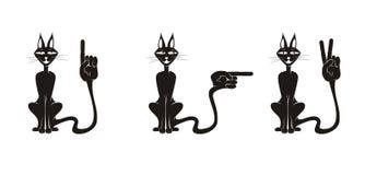 Gatos & mãos Foto de Stock