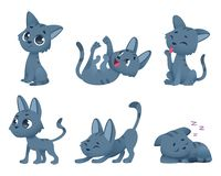 Gatos bonitos do bebê Os animais domésticos pequenos engraçados brincam personagens de banda desenhada do vetor do gatinho em vár ilustração royalty free