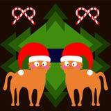 Gatos bonitos em chapéus de um Natal Fotos de Stock