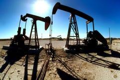 Gatos de bombeo del campo petrolífero Imágenes de archivo libres de regalías