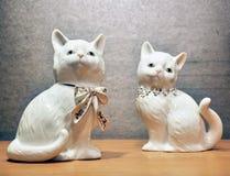 Gatos de la porcelana Fotografía de archivo