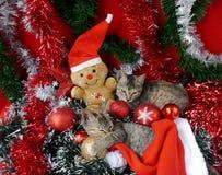 Gatos de las tarjetas de la Feliz Navidad y de una Feliz Año Nuevo Imagenes de archivo