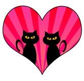 Gatos del amor Fotografía de archivo