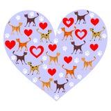 Gatos del amor Imagenes de archivo