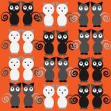 Gatos divertidos grises aislados en fondo anaranjado Imagenes de archivo