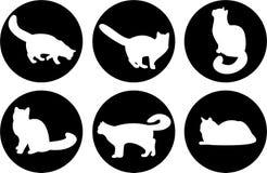 Gatos do logotipo Imagem de Stock Royalty Free