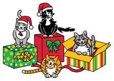 Gatos 2 do Natal Foto de Stock