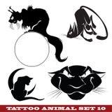 Gatos do tatuagem Imagem de Stock