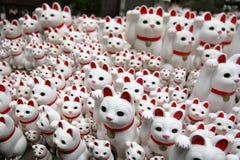 Gatos do templo Imagem de Stock Royalty Free