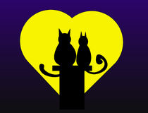 Gatos do Valentim fotos de stock royalty free
