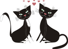 Gatos e amor Foto de Stock Royalty Free
