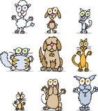 Gatos e cães dos desenhos animados Foto de Stock Royalty Free