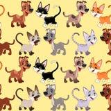 Gatos e cães engraçados com fundo Fotos de Stock Royalty Free