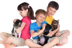 Gatos e cão da menina dos meninos Fotos de Stock Royalty Free