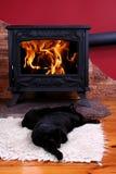 Gatos el dormir delante del fuego fotografía de archivo