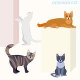 Gatos em poses diferentes, ilustração do vetor Imagens de Stock Royalty Free