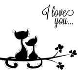 Gatos en amores Imágenes de archivo libres de regalías