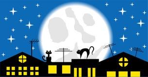 Gatos en el tejado en el vector de la noche Imagen de archivo