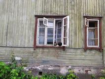 Gatos en la ventana de la casa vieja imagenes de archivo