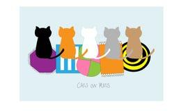 Gatos en las esteras Fotos de archivo