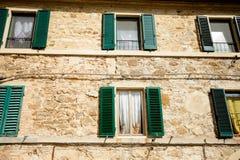 Gatos hermosos en Montalcino, Toscana Foto de archivo