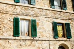 Gatos hermosos en Montalcino, Toscana Imagen de archivo libre de regalías